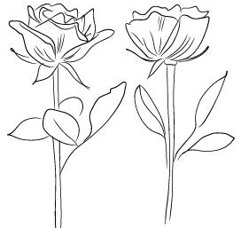 blommor1Rityta 1