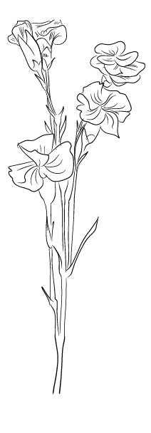 blommor3Rityta 1